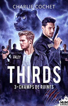 Champs de ruines: Thirds-T3  (2020)